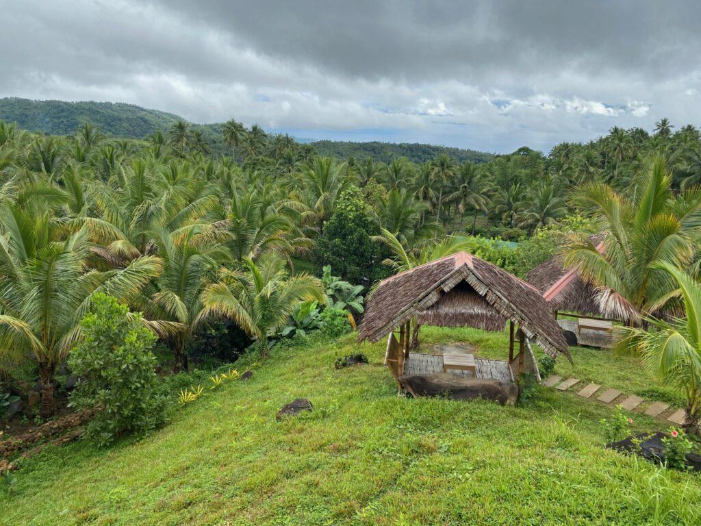 Alimyon Kapehan, Twin Lake, Dumaguete
